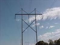 Transmission Lines & Trees