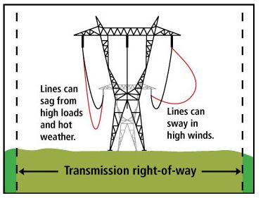 Transmission Lines & Trees